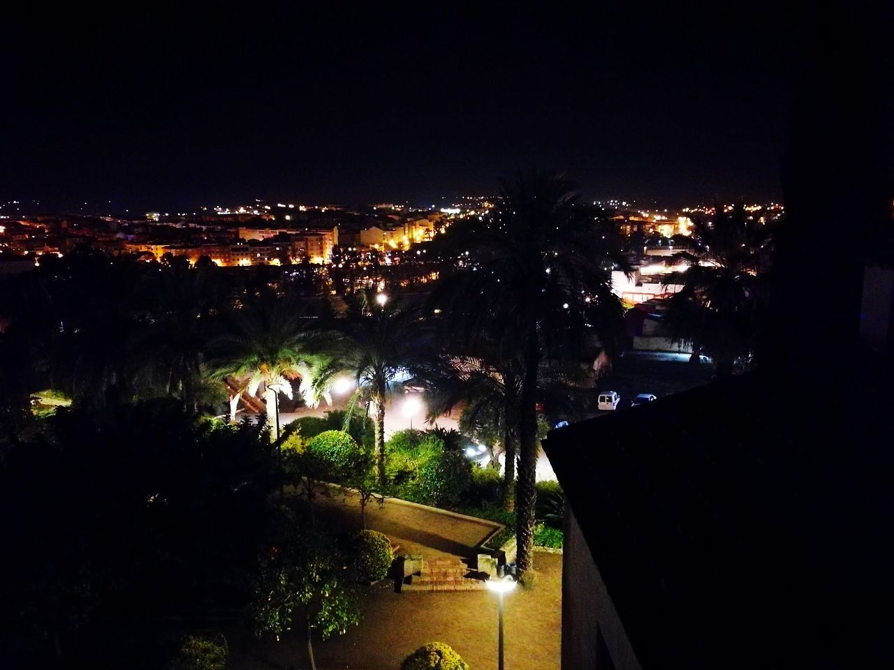 night, illuminated, tree, architecture, building exterior, built structure, town, no people, palm tree, outdoors, city, cityscape