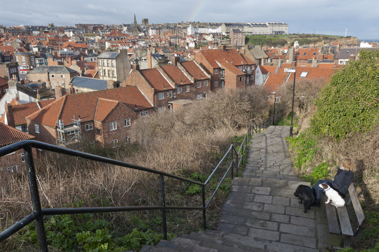 A lady rests on a bench during a picturesque dog walk in Whitby, Yorkshire. Bench City City View  Day Dog Walking Dogs Elevated View Exercise Landscape Outdoors Peaceful Real People Rest Sky Stairs Steep Whitby Whitby View Yorkshire Yorkshire Coast