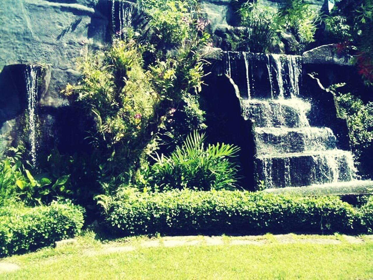nature, plant, growth, outdoors, beauty in nature, water, motion, day, no people, green color, spraying, waterfall, scenics, architecture, grass, freshness