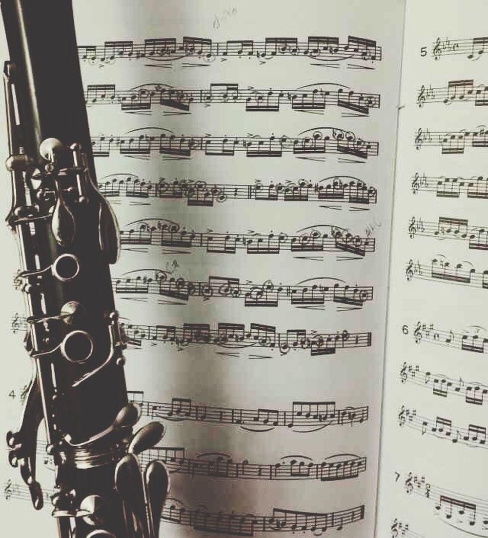 I Wish I Had My Clarinet Band Bandgeeks Bandgeekswag Sheetmusic