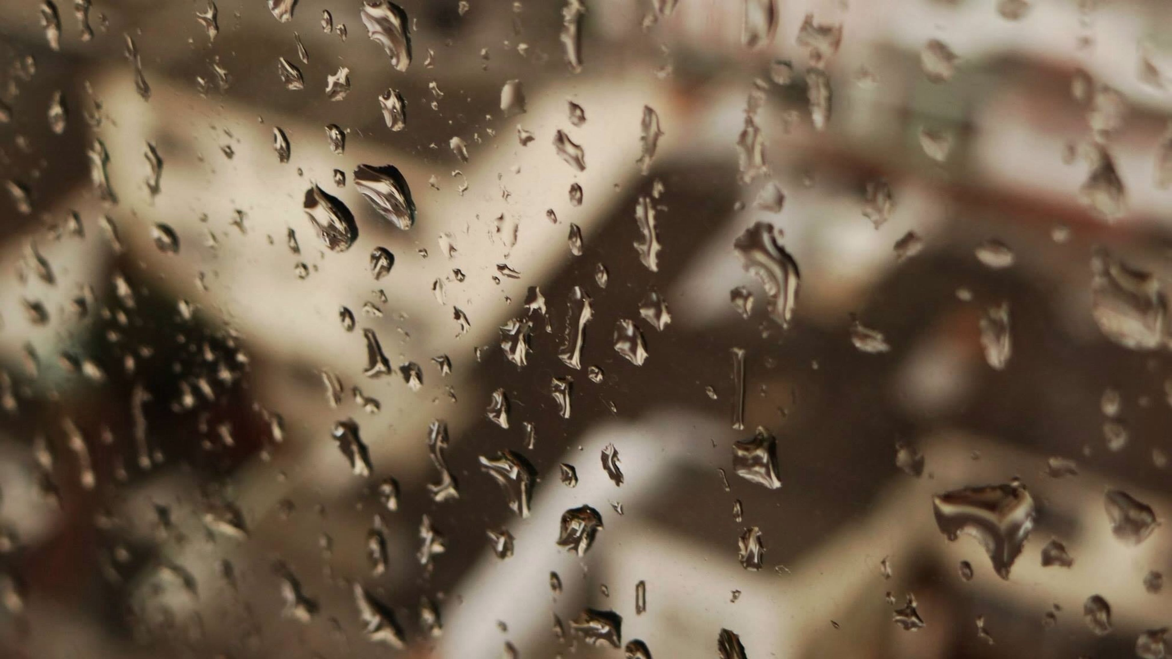drop, wet, window, full frame, indoors, water, backgrounds, rain, transparent, glass - material, raindrop, focus on foreground, close-up, weather, glass, season, no people, day, droplet, nature