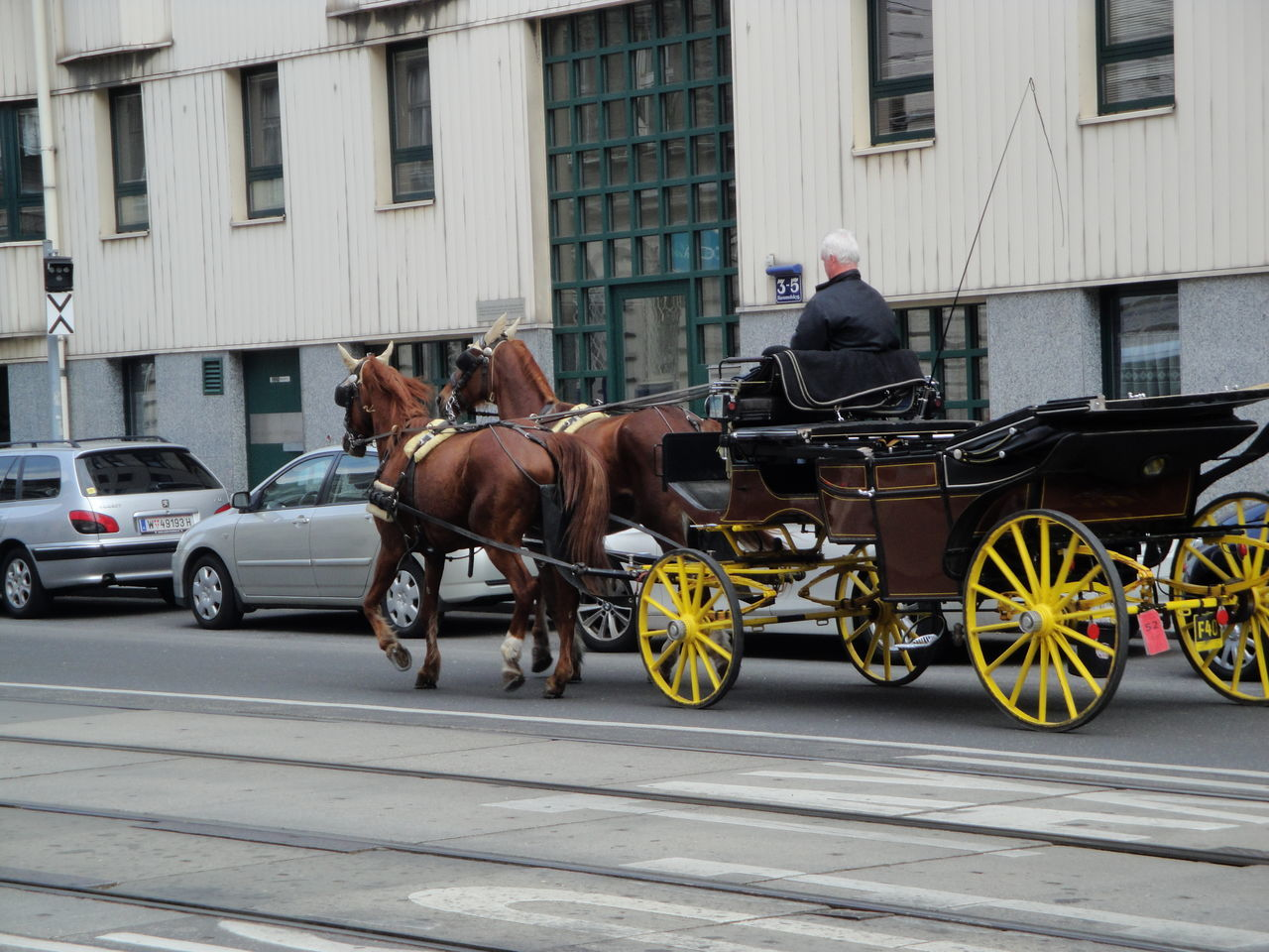 Wien / Vienna, Austria Architecture Building Exterior Built Structure City Day Domestic Animals Horse Horse Cart Horsedrawn Land Vehicle Mammal Men Mode Of Transport One Animal One Person Outdoors People Real People Street Transportation Vienna Wien Working Animal