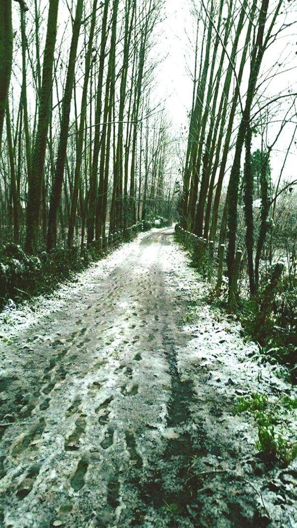 Termede kış