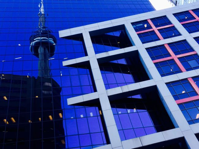 Architecture Building Exterior Built Structure Window Modern Low Angle View City Tower Outdoors Day Blue No People Skyscraper Sky toronto CN Tower - Toronto