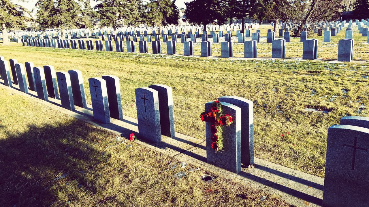 Beautiful stock photos of veteran's day, Arrangement, Canadian Culture, Cemetery, Day