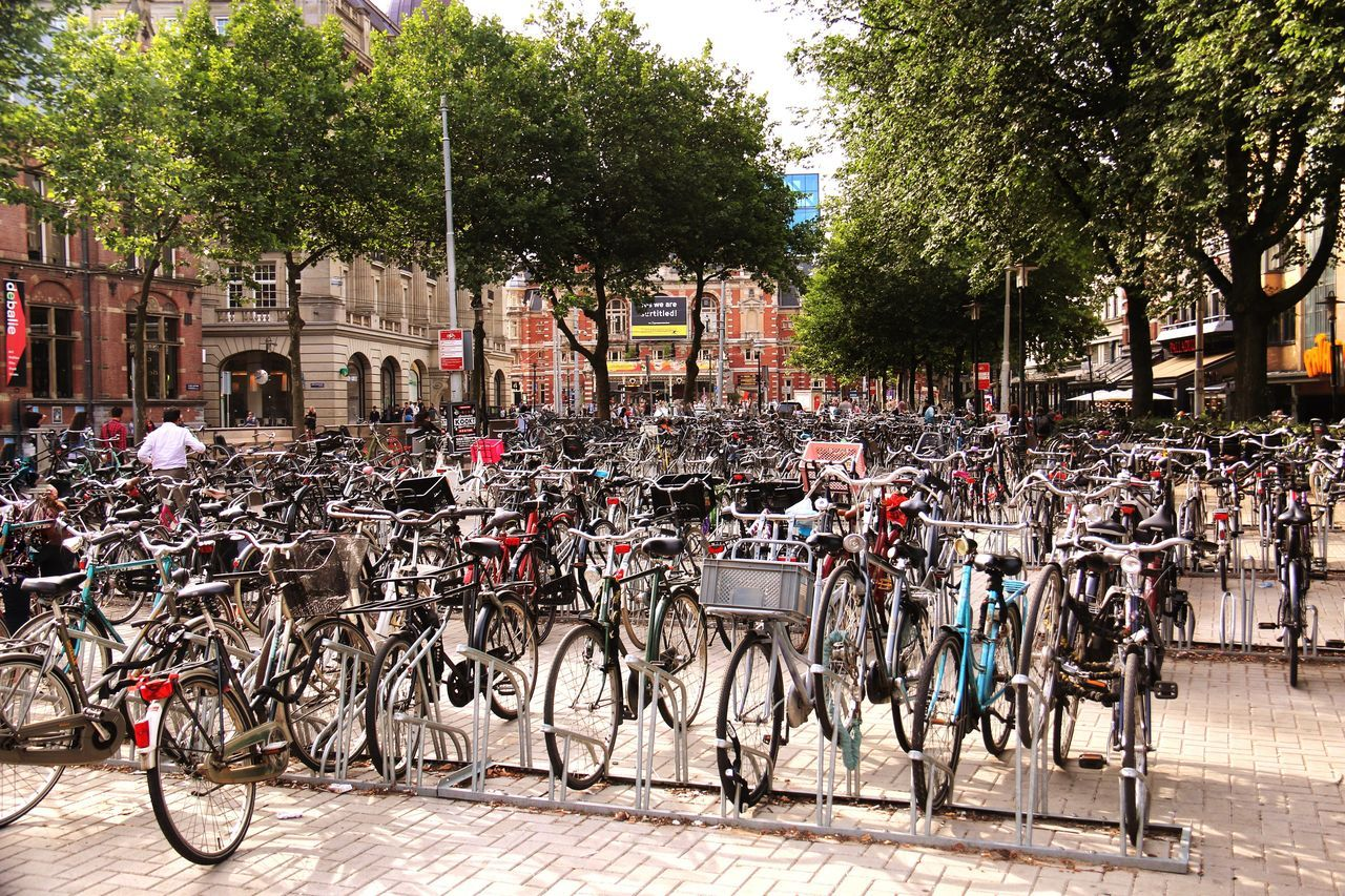 Bike Park in Amsterdam - mode of transportation. There are more bikes than cars on the streets of Amsterdam. Bikes Brick Buildings Trees Check This Out Taking Photos Enjoying Life Bicycles Of Amsterdam City Life Landscape Athleisure