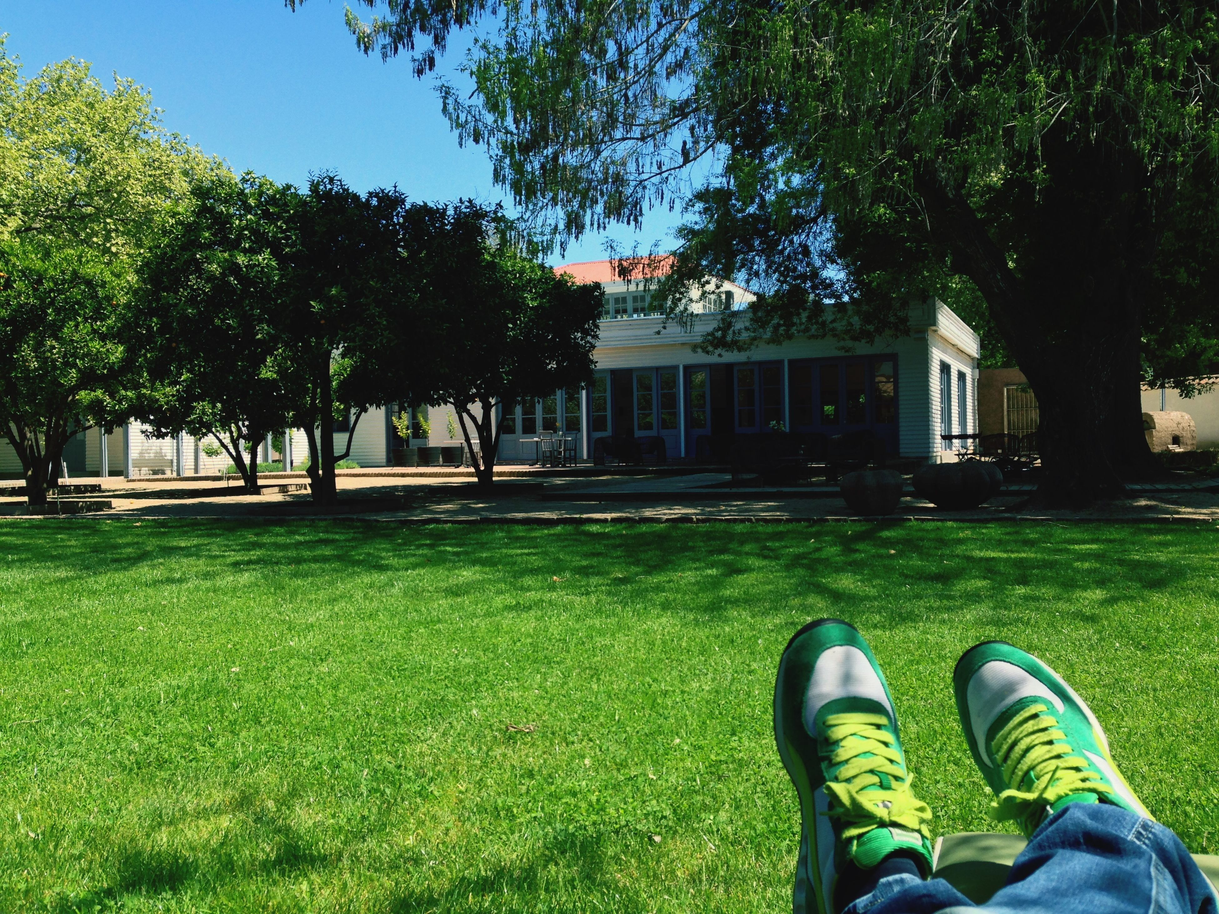 grass, low section, green color, grassy, lawn, tree, field, person, men, lifestyles, shoe, building exterior, architecture, leisure activity, grassland, growth, built structure, relaxation