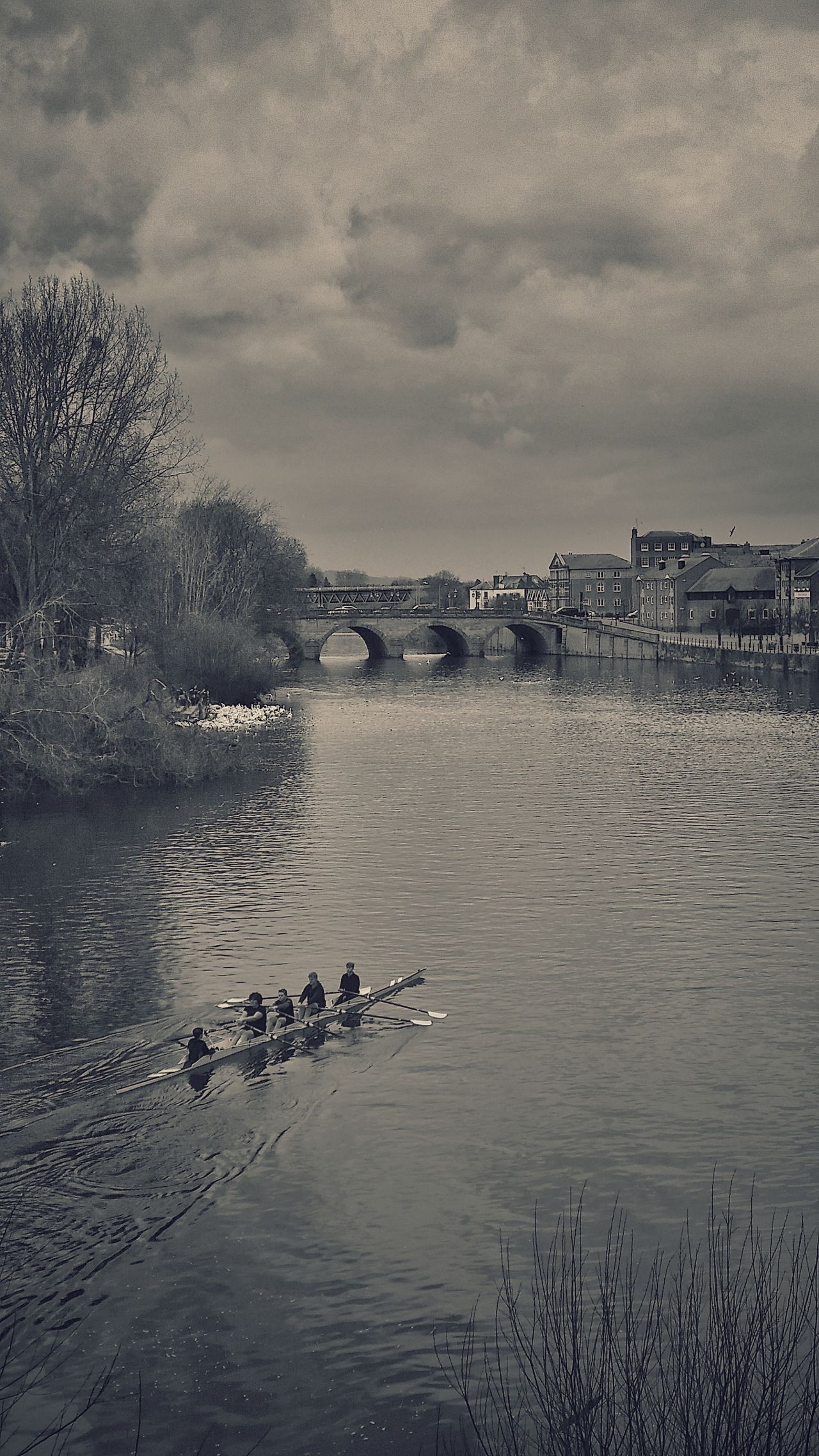 Trainee Rowers on the River Severn Worcester. The patch of white on the left is a large group of Swans. They're always there in the daytime because so many locals feed them daily. I've counted over 250 before now! Flock Of Birds Vintage Edit  Winter Exceptional Photographs Eyeemphotography Beauty In Ordinary Things EyeEm Masterclass Vintage Editing Worcester Rowing Club England 🌹 River View Rowing