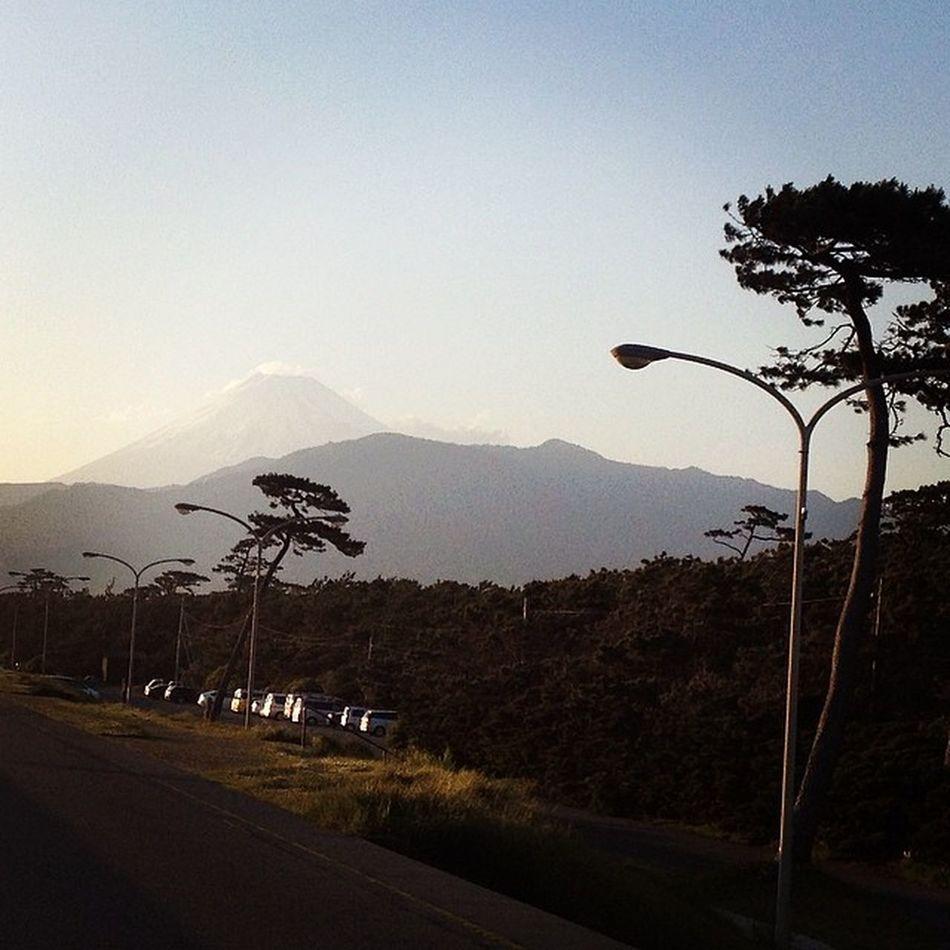富士山を見に来てみたり…
