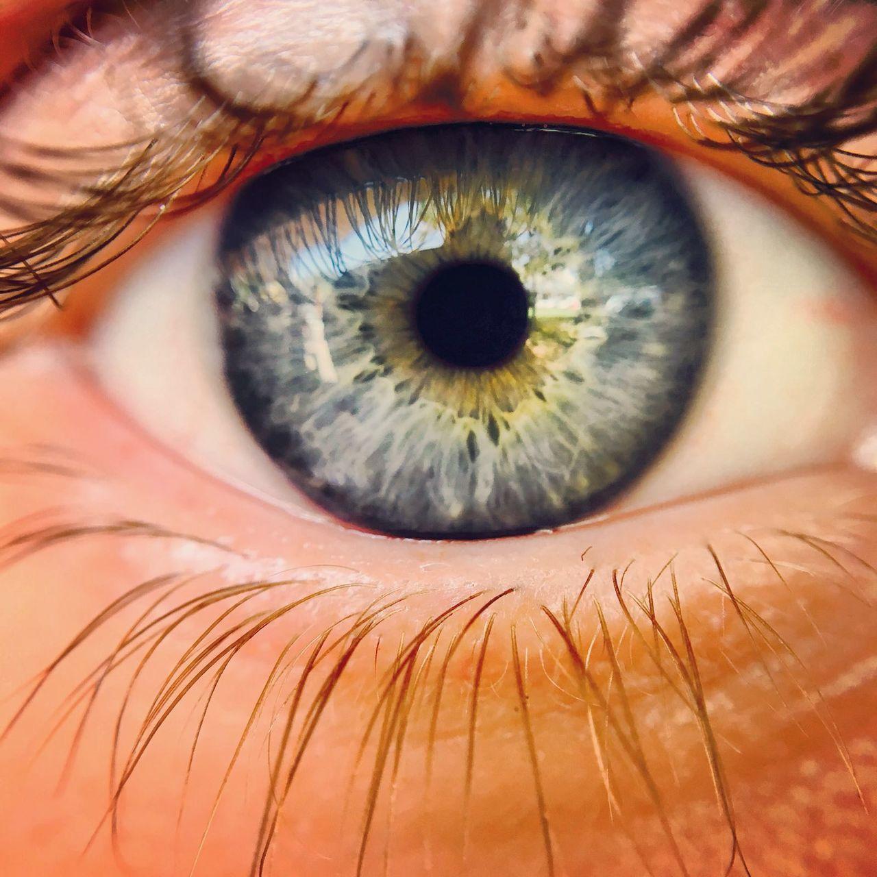 Macro eye Macro Photography Human Eye Human Body Part Eyesight Eyelash Eyeball Extreme Close-up Iris - Eye Close-up People One Person Adult Day Unique Blue Blue Eyes EyeEmNewHere
