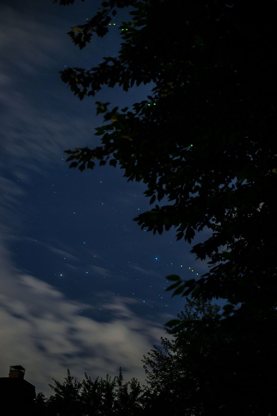 Astronomy Fireflies Fireflies In The Night  Nighttime Insects  Bugs Night Night Sky Space Stars