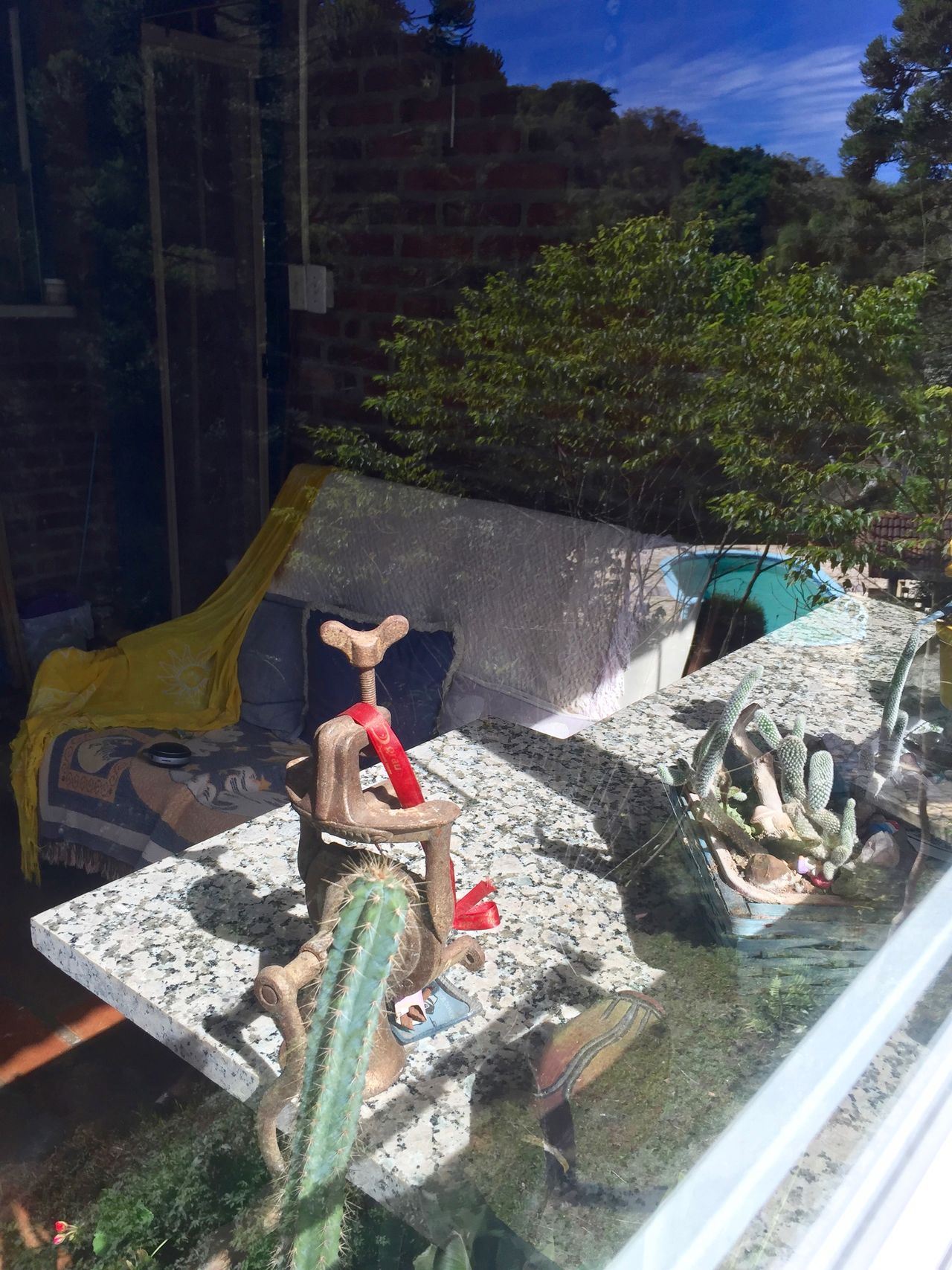 Reflexions from in and outside through the glasses of a widow. Abstract Balcony View Bricks Wall Day Granite Counte Indoors  Mix Image Mixed Nature Out And Indoors Outdoors Plant Reflexions Swimmingpool Tree Wall