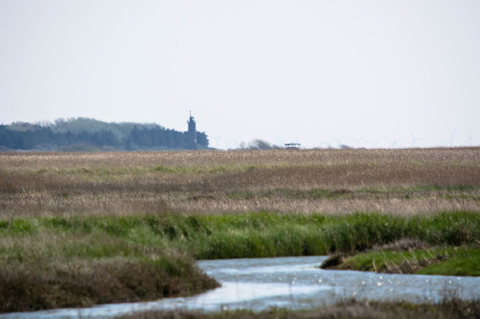 northern contrasts.. Calm Enjoying The View Eye4nature Eye4photography  EyeEm Nature Lover From My Point Of View Landscape Landscapes With WhiteWall Leuchtturm Leuchtturm St Peter Böhl Lighthouse Nature Nikon Nikonphotography Open Edit River Riverside Schleswig-Holstein SPO St Peter Ording St. Peter Böhl St. Peter-Ording Taking Photos The Great Outdoors - 2016 EyeEm Awards The Great Outdoors With Adobe