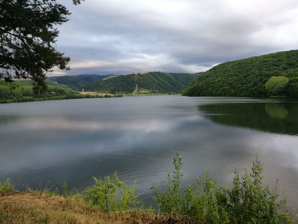 Lake Tree Landscape Nature Scenics Outdoors Cloud - Sky Beauty In Nature Tranquility No People Water Forest Sky Day Grass Riverthames No Filter No Edit Just Photography Travel Destinations Nature Field Rural Scene
