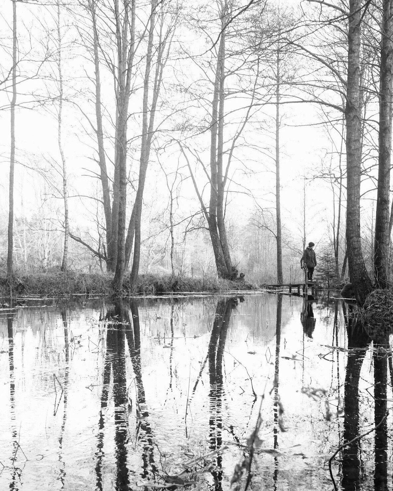 Tree Nature Reflection Tranquility Beauty In Nature Black And White Shootermag Monochrome Bw_collection