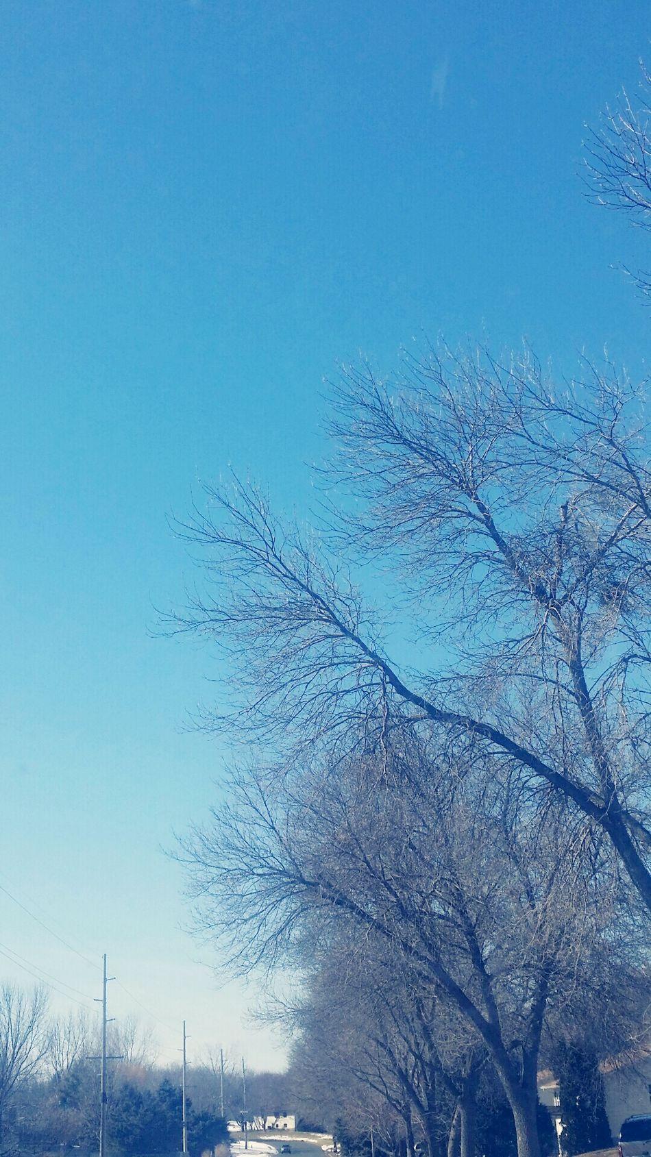 Vintage Moments Hybridminds Trees Driving Seasonchange Nature Photography Eyemnaturelover Galaxynote3