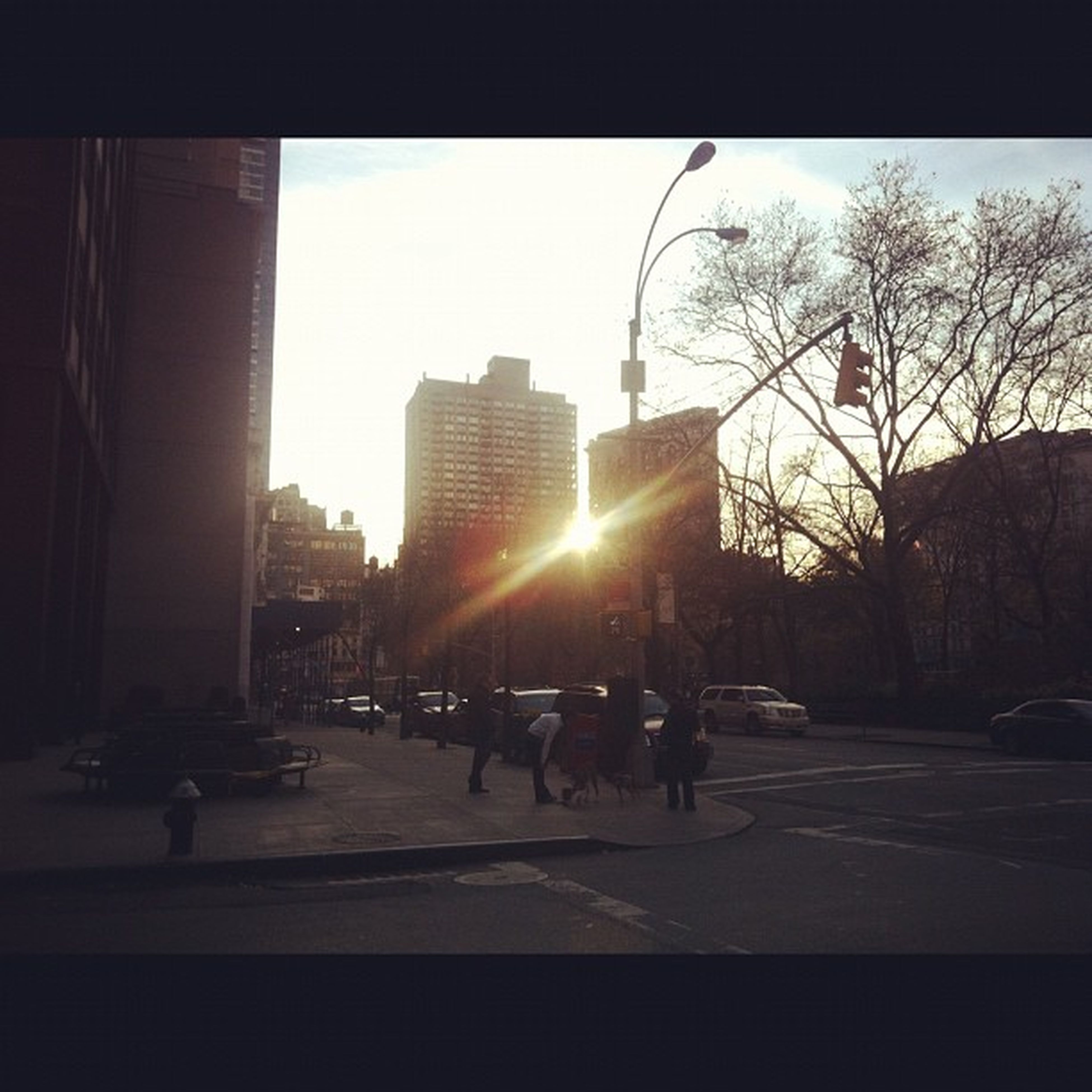 building exterior, architecture, built structure, street, transportation, sun, car, land vehicle, city, sunlight, road, silhouette, bare tree, mode of transport, sunbeam, clear sky, sunset, lens flare, city street