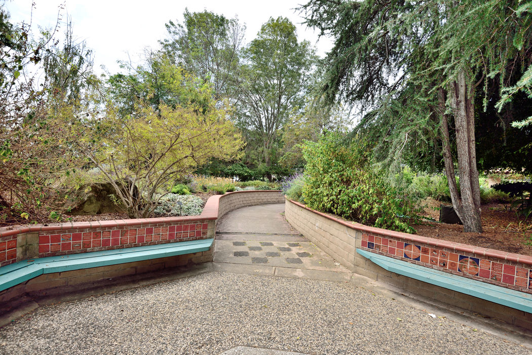 Sensory Garden 5 The Gardens At Lake Merritt Lakeside Park Oakland, Ca. Walkway Path Garden _collection Garden_Photography Early Autumn Tranquility Garden Lovers Nature Beauty In Nature Nature_collection Landscape_Collection Landscape_photography Landscape Trees Flowers Schrubs Horticulture Botany Sensory World Enjoying Life Time Out Tiled Walls
