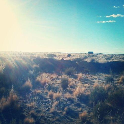 Respirar el Aire Mañanero del Altiplano , es único...en las tierras de mi abue...:)