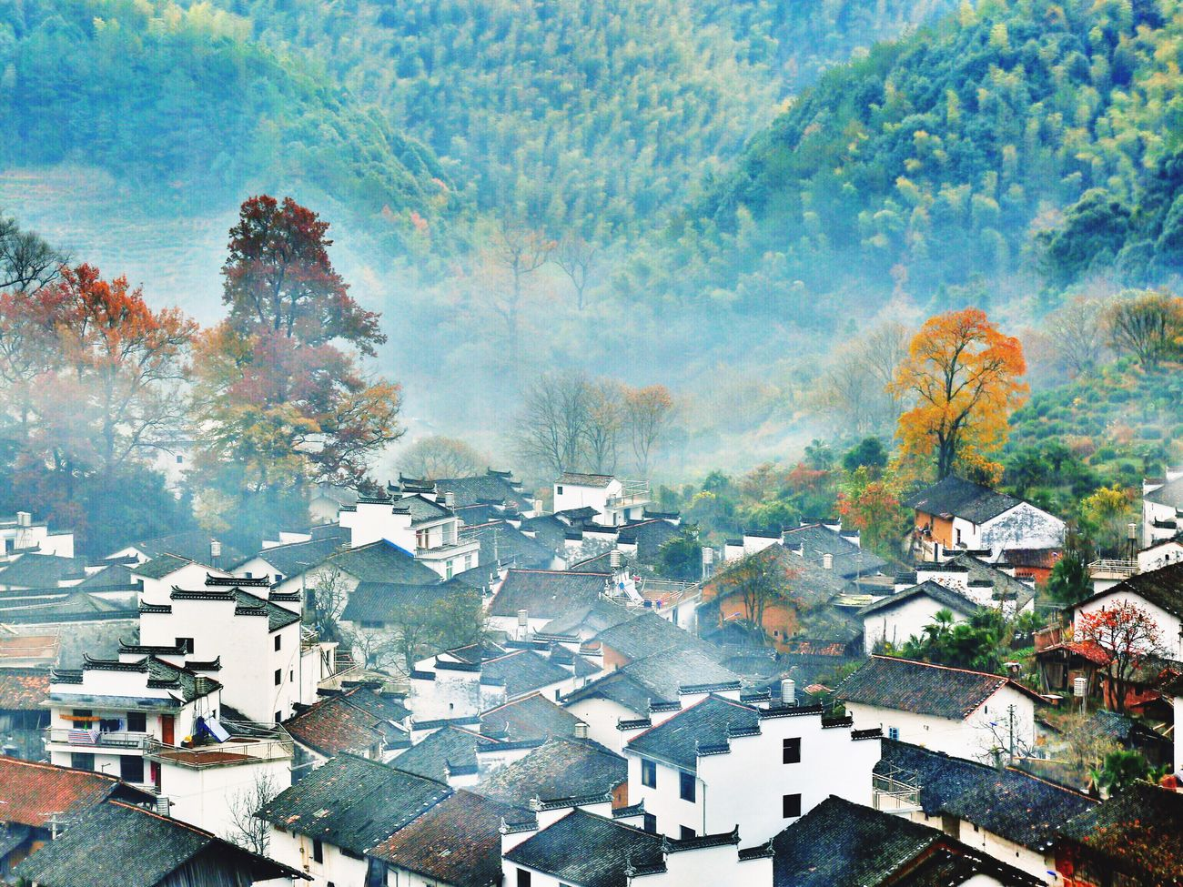 High Angle View Building Exterior Roof Community Hello World Charm China Landscape_photography Landscape_lovers Scenics Autumn🍁🍁🍁 Natural Phenomenon EyeEm Best Shots Ecology EyeEm Nature Lover Fog Eye4photography  Autumn Villages Beauty In Nature Landscapes Tranquility Mountain Nature Foggy Morning Tree