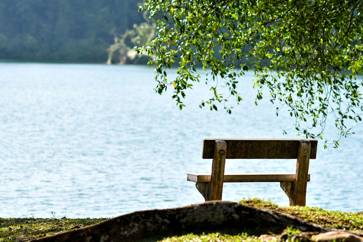 Garden Bench Garden Bench Lonly Lonlyness Lonly Day Lake View Water Nature Landscape Tranquility Sea Tranquil Scene Scenics Outdoors Day No People Beauty In Nature Tree