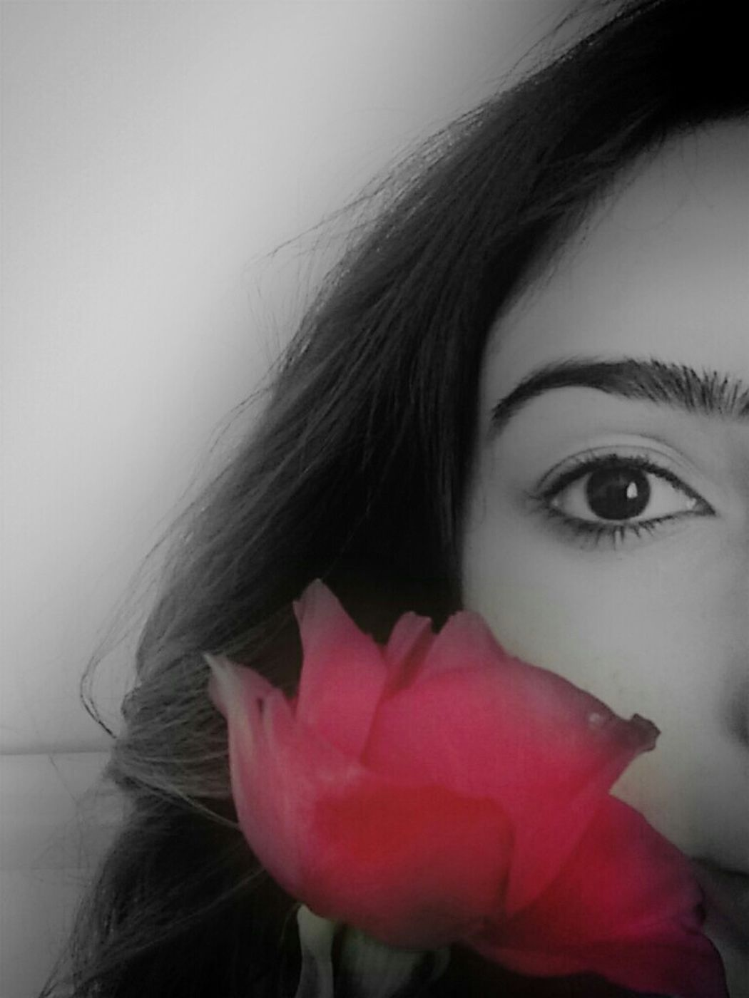 Blackeyes Rose♥ Love ♥ Life
