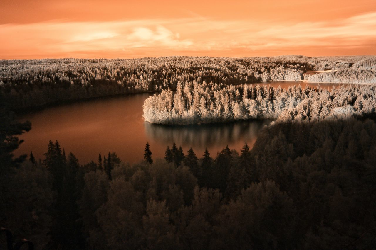 Infrared image of lake view at Aulanko nature park in Finland Aerial Shot Aerial View Aulanko Beauty In Nature Day Finland Lake Lake View Landscape Nature No People Outdoors Peaceful Reflection Scenery Scenics Sky Summer Sunset Tranquil Scene Tranquility Tree Water