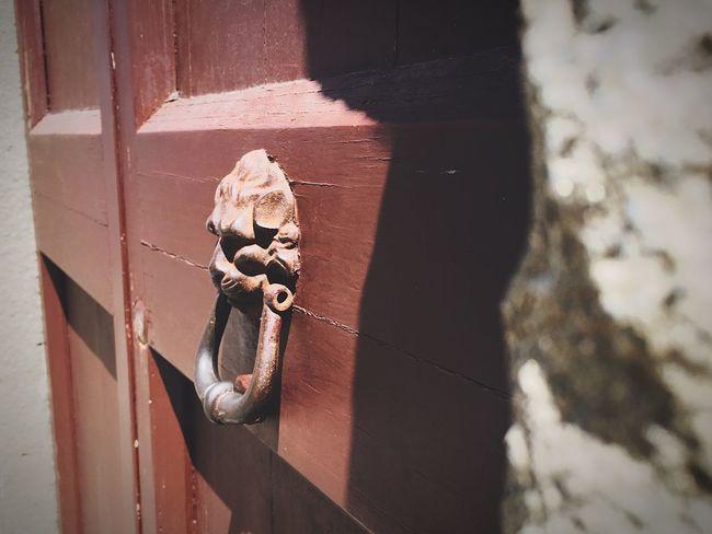 Pisa Doorknocker lion art First Eyeem Photo Door