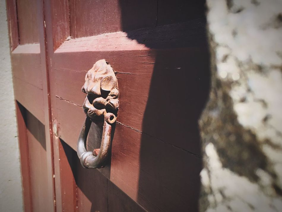 Pisa Doorknocker lion art First Eyeem Photo Door