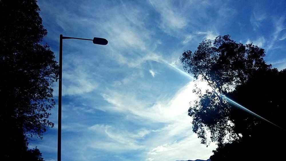 Tree Day Sport Sky Nature Blue Cloud - Sky Beauty In Nature Sunny Day 🌞 Sunshine Sun Light, - TaiPo Lin Vilage Hong Kong