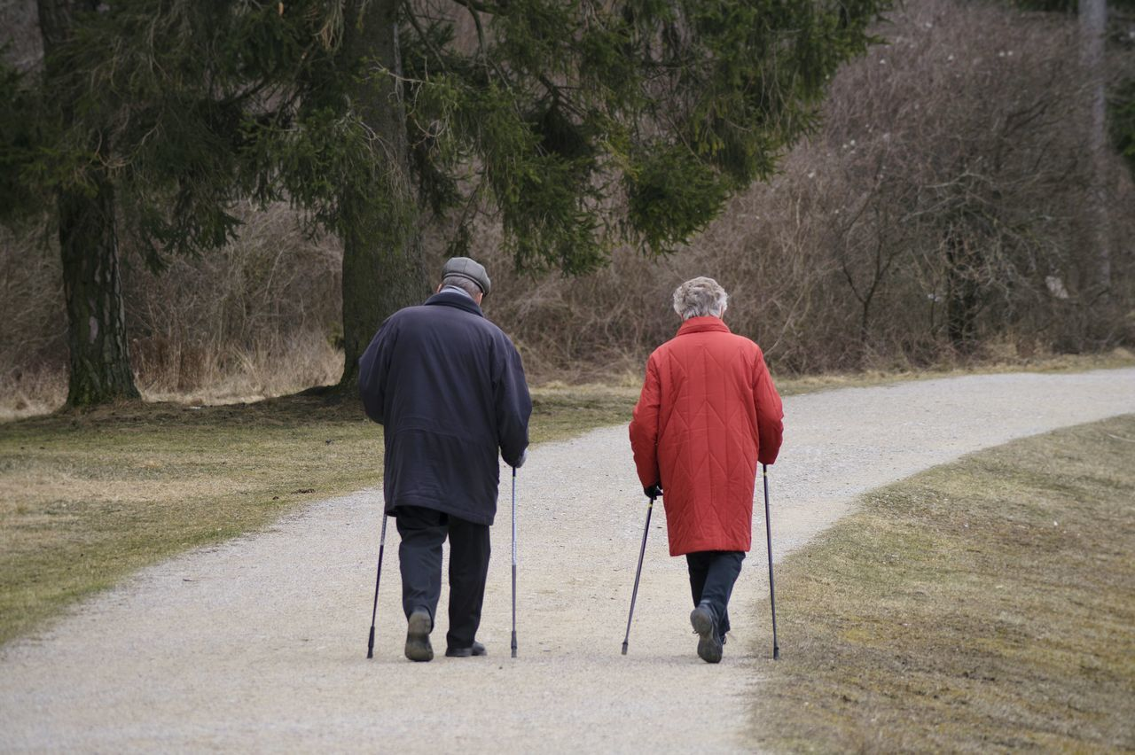 Nordic Walking Nature People Watching Sport People Outdoors Sporty Healthy Old People Healthy Lifestyle From My Point Of View Old Healthy Life Capture The Moment Enjoying Nature Fitness Fit Fitnessmotivation Tree Nature On Your Doorstep Outdoor Sport Pedestrian Zone