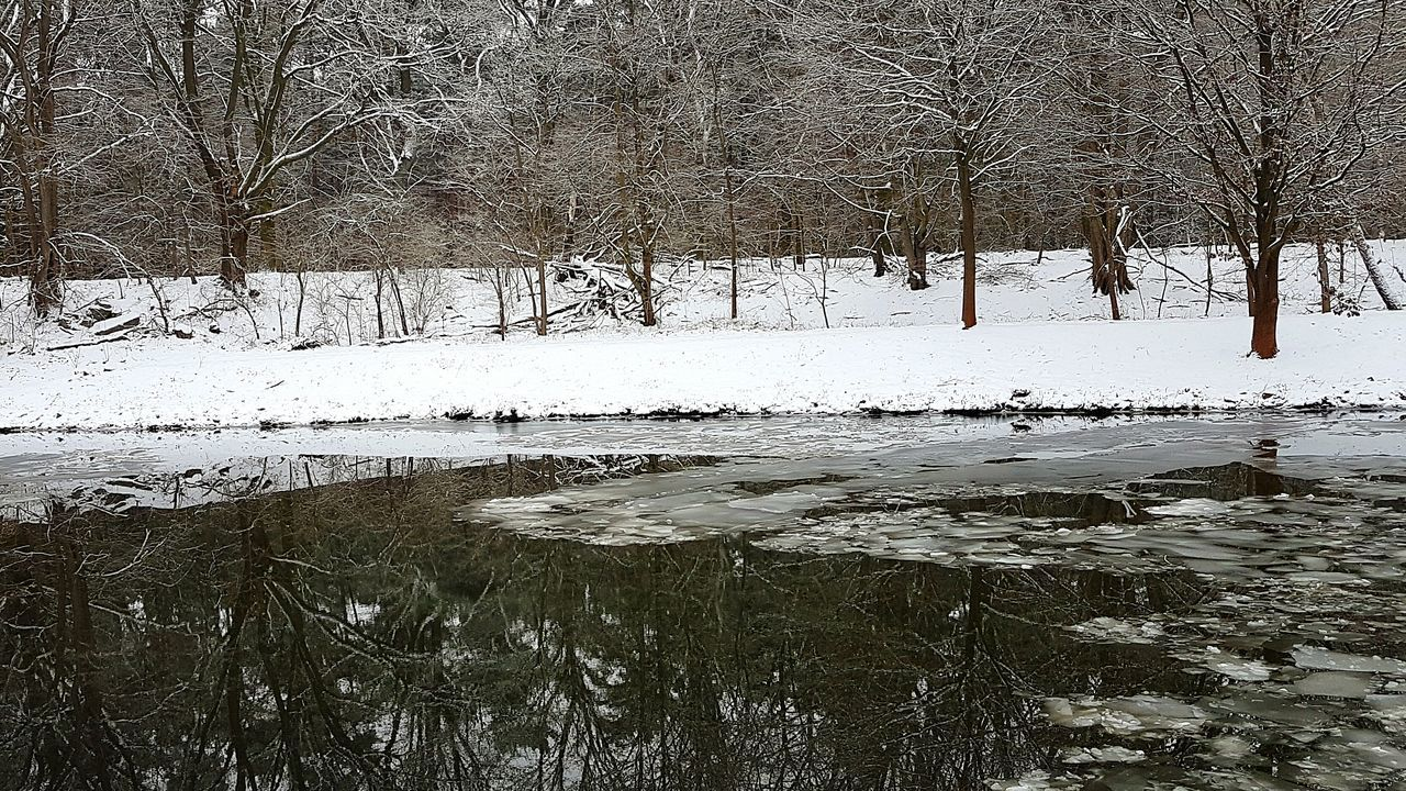 Spiegelung Backgrounds Water Nature Full Frame Landscape No People Outdoors Abstract Day Tree Close-up Beauty In Nature Forest Photography Snow Ice Mirror Mirror Picture EyeEm Team EyeEm Gallery EyeEm Best Edits Nature_collection EyeEm Best Shots Snow Day Cold Temperature Frozen