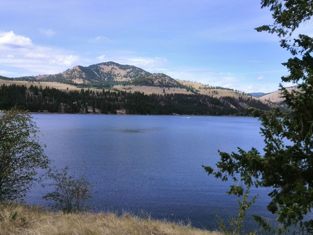 Conconully,WA Lake Lake View Lake Views Relaxing Peace Peace And Quiet Peaceful Blue Sky Blue Sky And Clouds Blue Sky White Clouds White Clouds White Clouds And Blue Sky Blue Sky And White Clouds Blue Sky On Water Water Summertime Summer Views Nature Outdoors The Week On Eyem