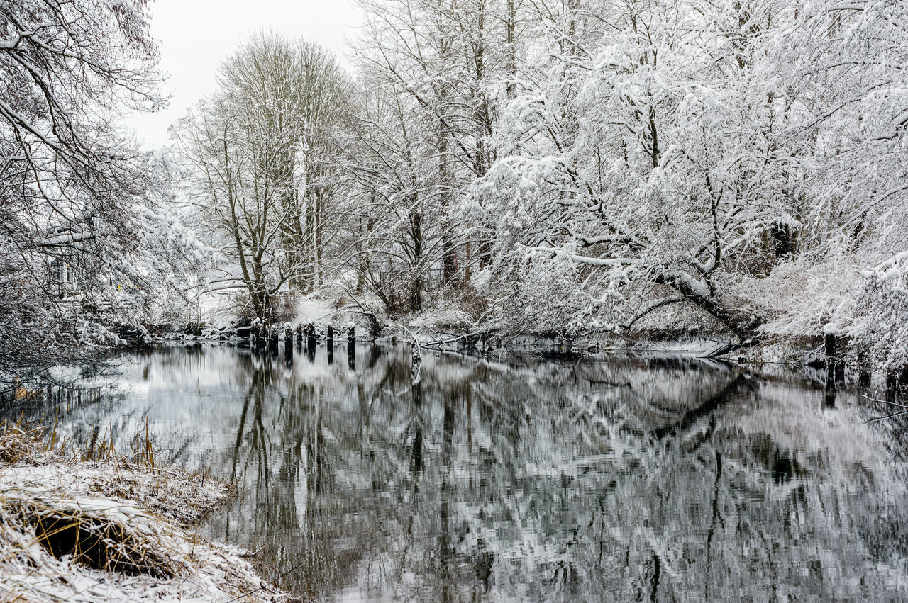 Bare Tree Beauty In Nature Branch Cold Temperature Day Nature No People Outdoors Reflections In The Water Scenics Sky Snow Snowing Tranquil Scene Tranquility Tree Water Winter