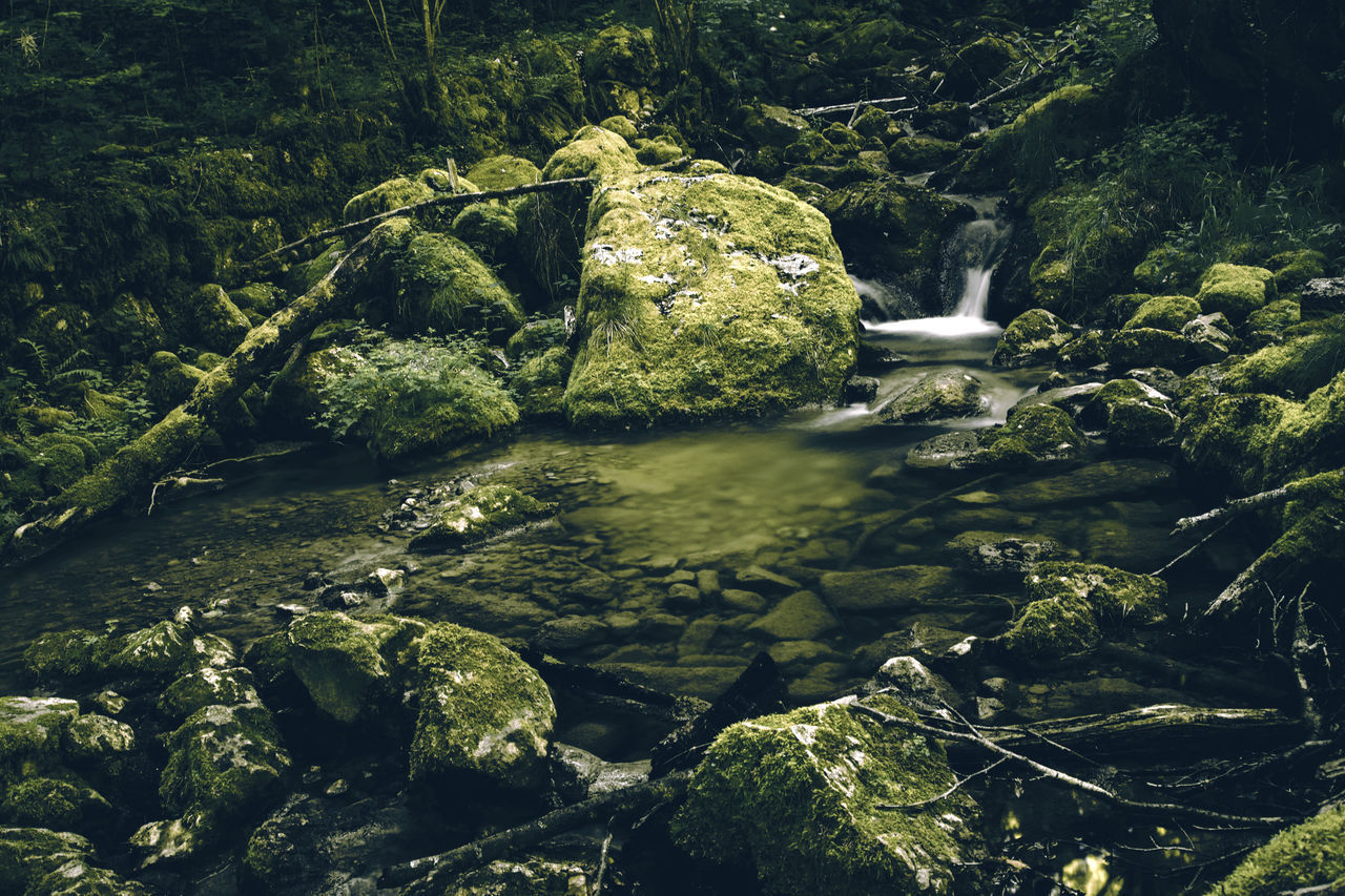 Beauty In Nature Forest Green Green Color Long Exposure Nature River Rock - Object Scenics Tranquil Scene Tree Water Waterfall
