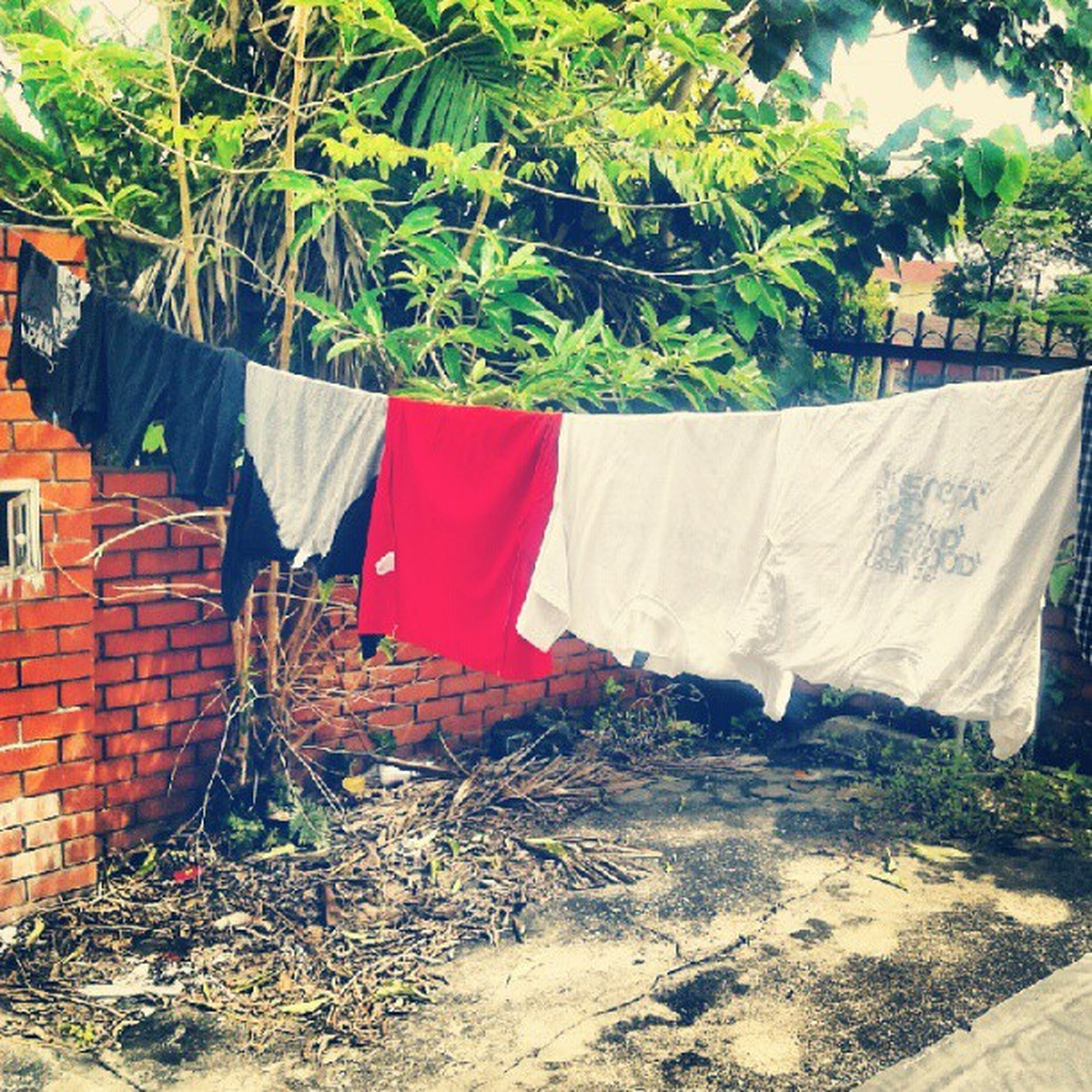 built structure, architecture, red, building exterior, tree, plant, day, house, outdoors, growth, no people, nature, wall - building feature, sand, wall, abandoned, sunlight, beach, drying, flag