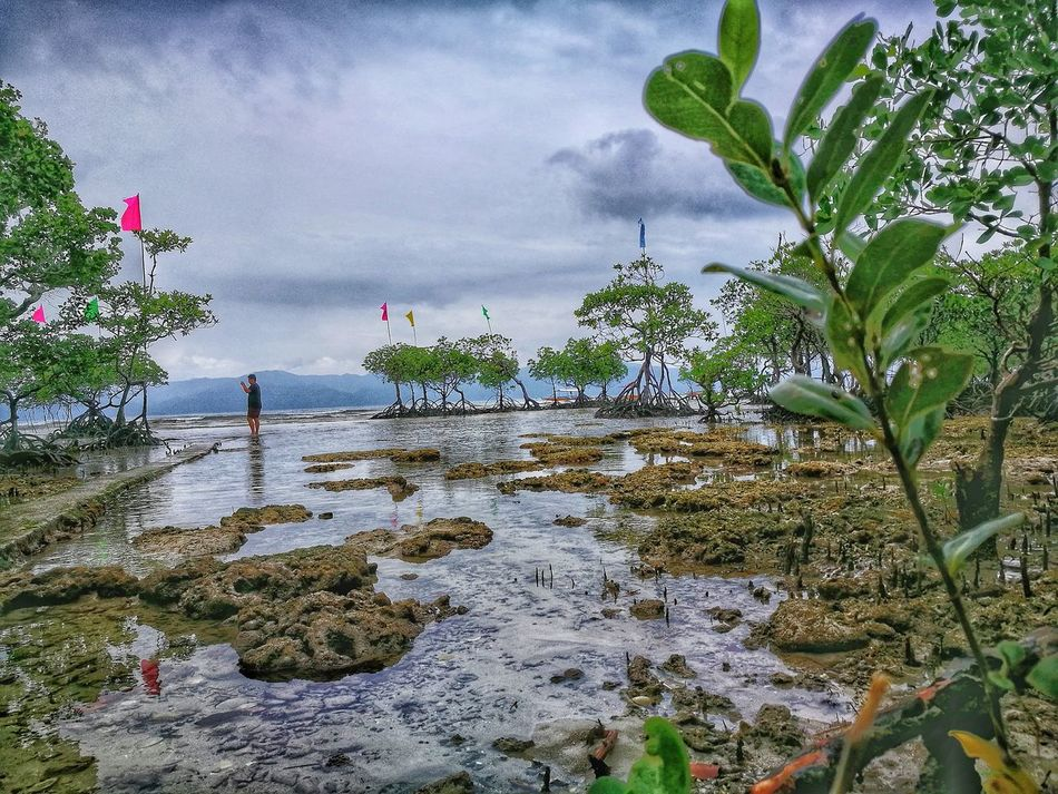 Water Reflection Plant Nature Tree Outdoors Beauty In Nature Day Beach Cagbaleteisland Cagbalete Island Cagbalete Quezon Province Philippines Beach Photography HuaweiP9Photography Nature Scenics Huawei P9 Leica