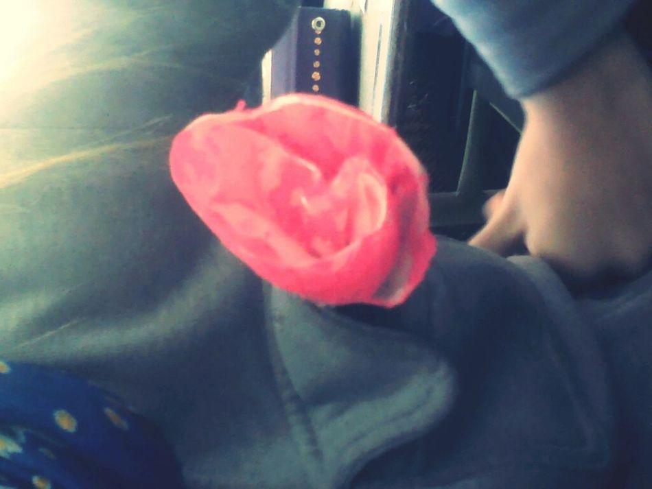Rose Beatifull Paper