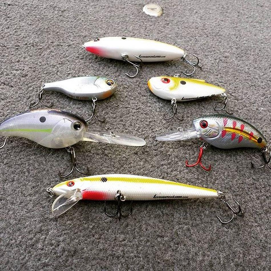 Get ready for power fishing days Bassfishing Powerfishingcrank Powerfishing Fishingstuff Crankbait Lipplesscrankbait Lipless Livingston