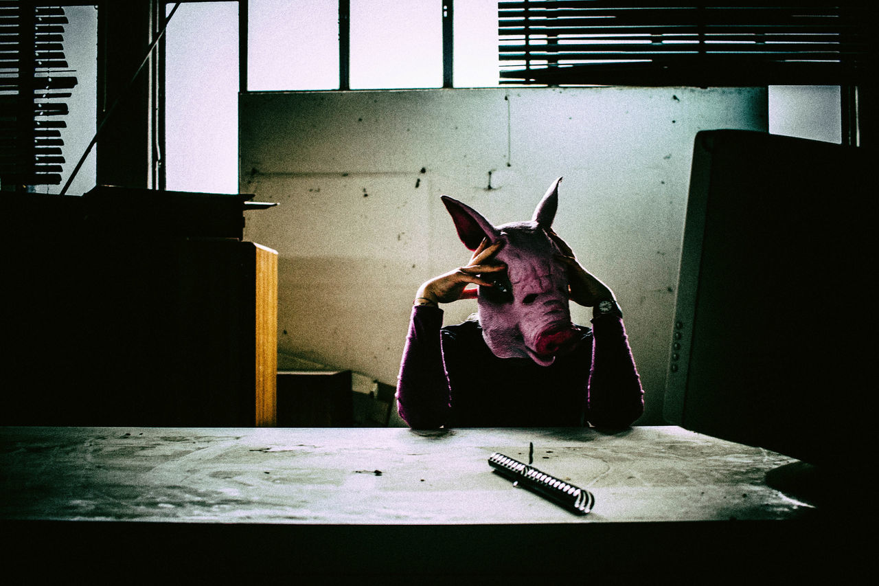 First little Projekt Abandoned Abadonedplaces Project Animal Themes Indoors  Window Pork Mask EyeEmNewHere The Week On EyeEm
