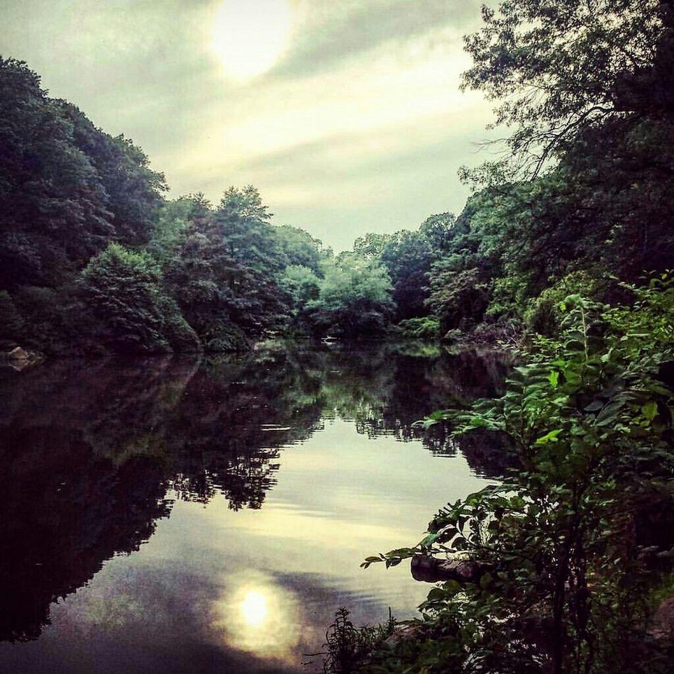 b l i s s. Statenisland Clovelakepark First Eyeem Photo