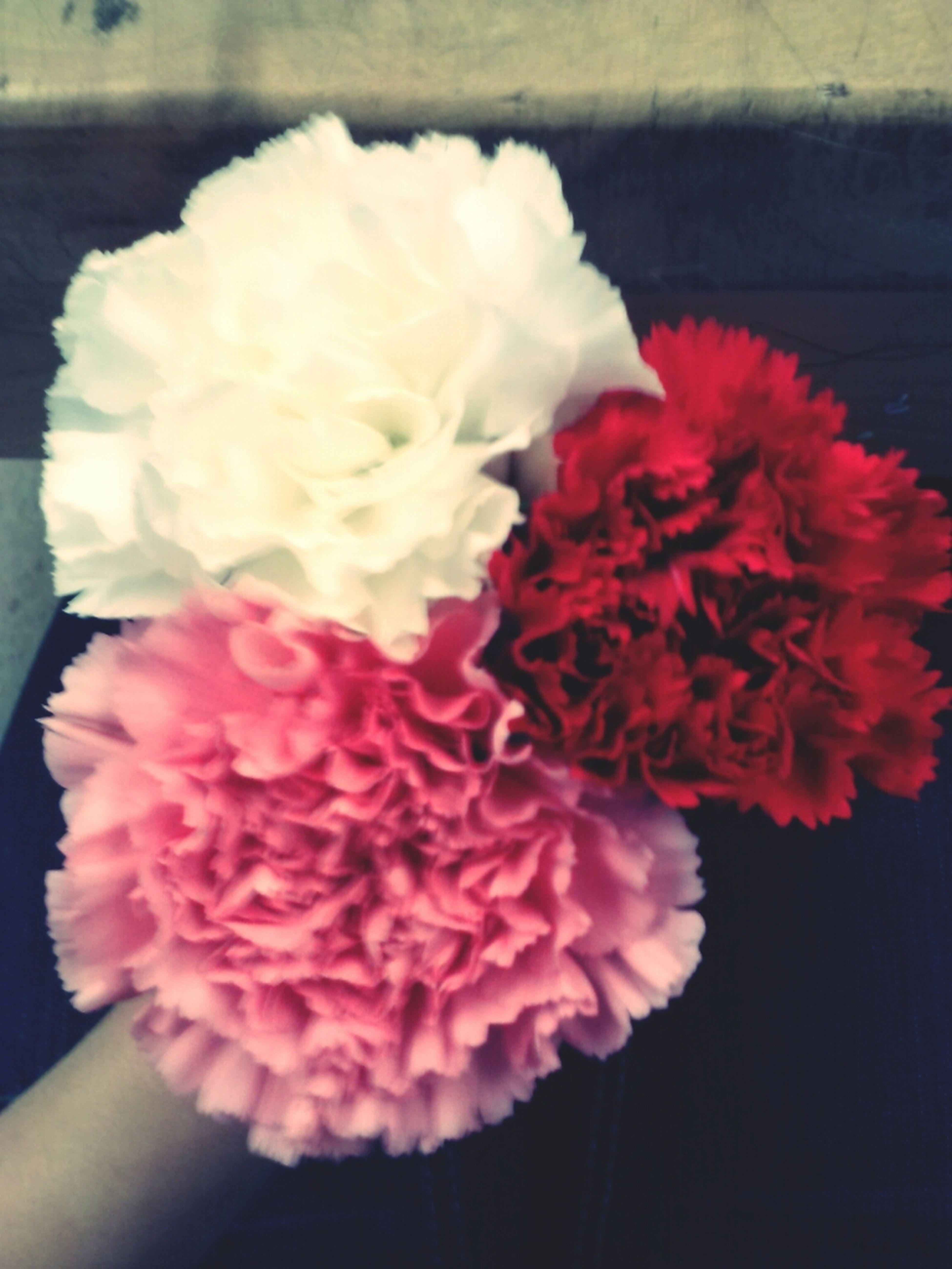 Valentine's Flowers: )