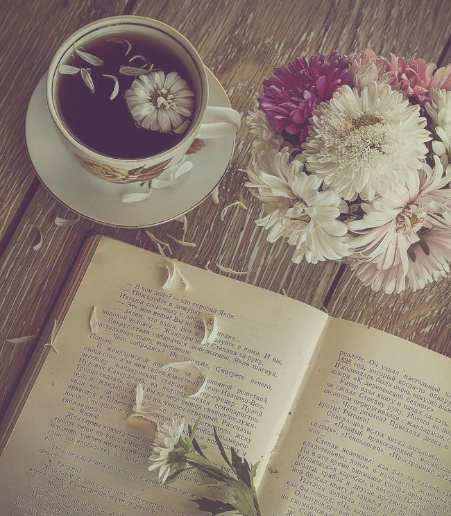 "Carl Gustav Jung has a great phrase: ""I am what I have done to yourself, and not that happened to me."" Indoors  Nature Nature_collection Book Flower Text Food And Drink Paper Rose - Flower Table Freshness High Angle View Tulip Communication Information Bouquet Bunch Of Flowers Message Single Flower Flower Head Focus On Foreground Selective Focus Enjoying Life Russia EyeEm Best Shots"