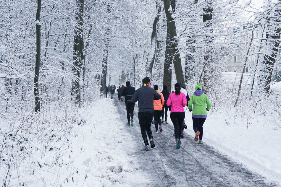 Authentic Cold Fitness Forest Full Length Group Group Of People Jogging Leisure Activity Outdoor Path People Person Real People Rear View Running Snow Sport Training Trees Unrecognizable Walking Weather Winter Woods