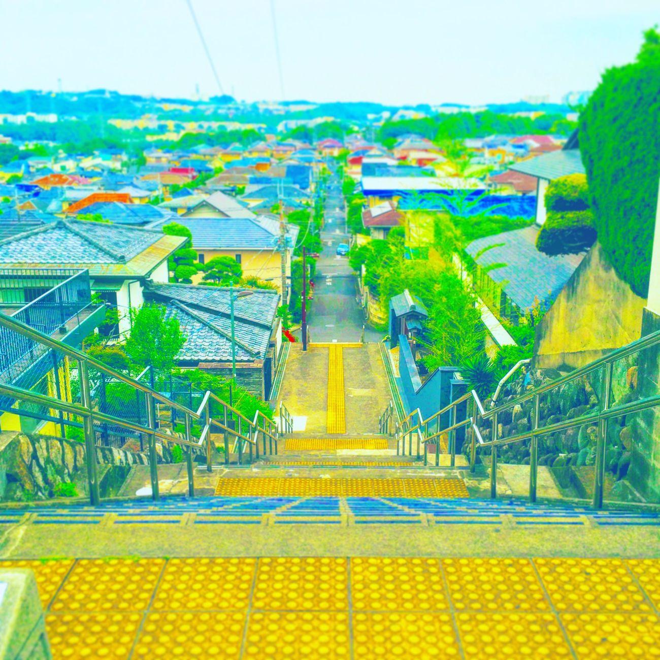 In 聖蹟桜ケ丘📍 とうきょう 聖蹟桜ケ丘 ジブリ Japanese  Japan Beutiful  映画 MOVIE Tokyo Totoro 耳をすませば