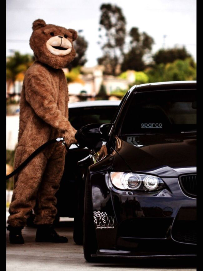 Mr. Bear attesting his bimmer | 📍join us on instagram @billionairelabel Billionaire  Billionairelabel Bimmer Land Vehicle Transportation Car Focus On Foreground Day Luxury