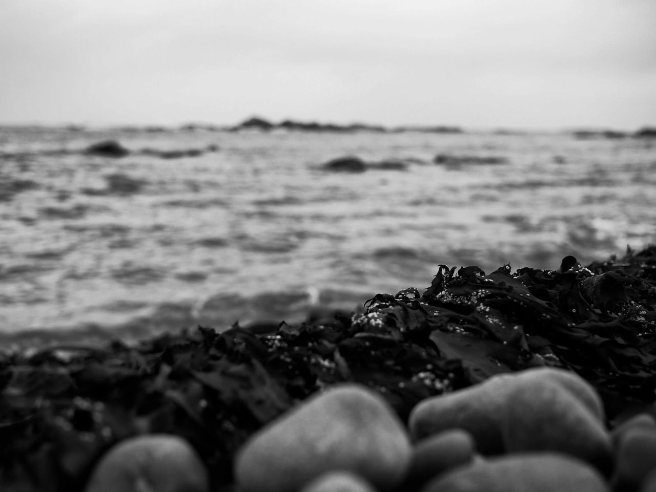 sea, beach, shore, water, nature, outdoors, sky, human body part, close-up, beauty in nature, human hand, horizon over water, day, one person, pebble beach, wave, people