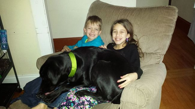 Eyeemphoto Hanging Out Two Is Better Than One Happy Children Boy And Girl Blonde Boy Brunette Girl l Children With Dog Big Dog Big Dog On Children In Chair. Family Aunt And Nephew