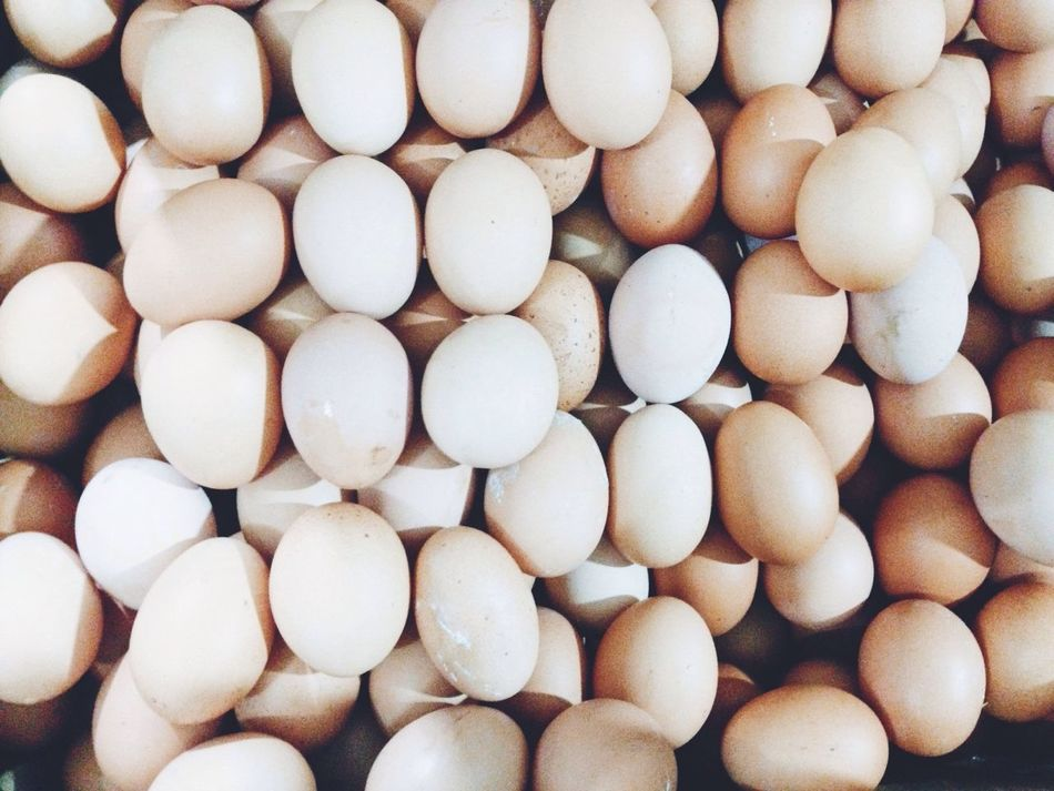 Beautiful stock photos of egg, Backgrounds, Close-Up, Detail, Egg