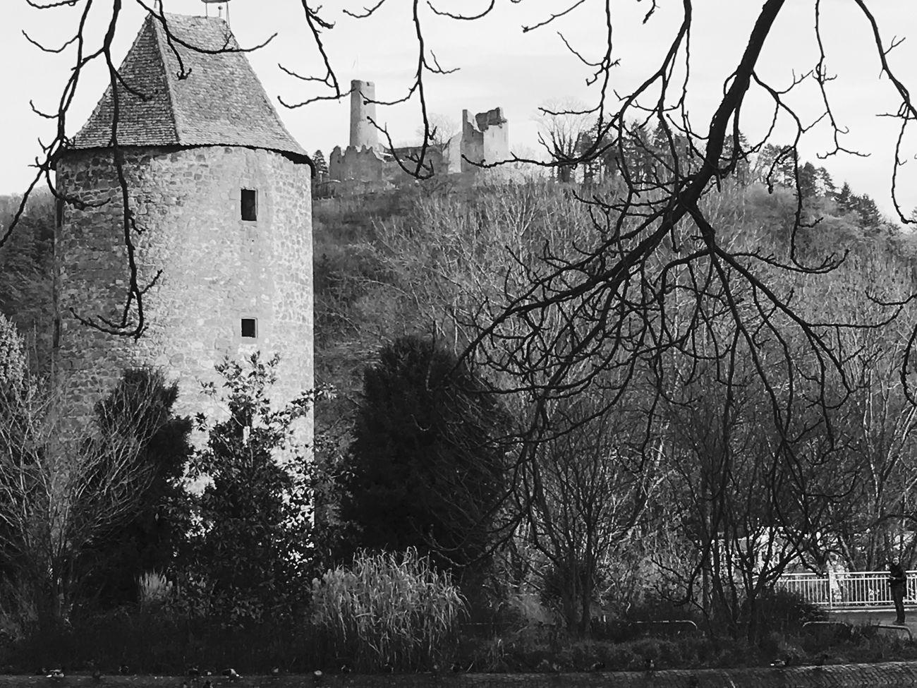 Weinheim Blackandwhite Photography Castle Castle Ruin First Eyem Photo Nature Nature_collection Blackandwhite Showcase: January